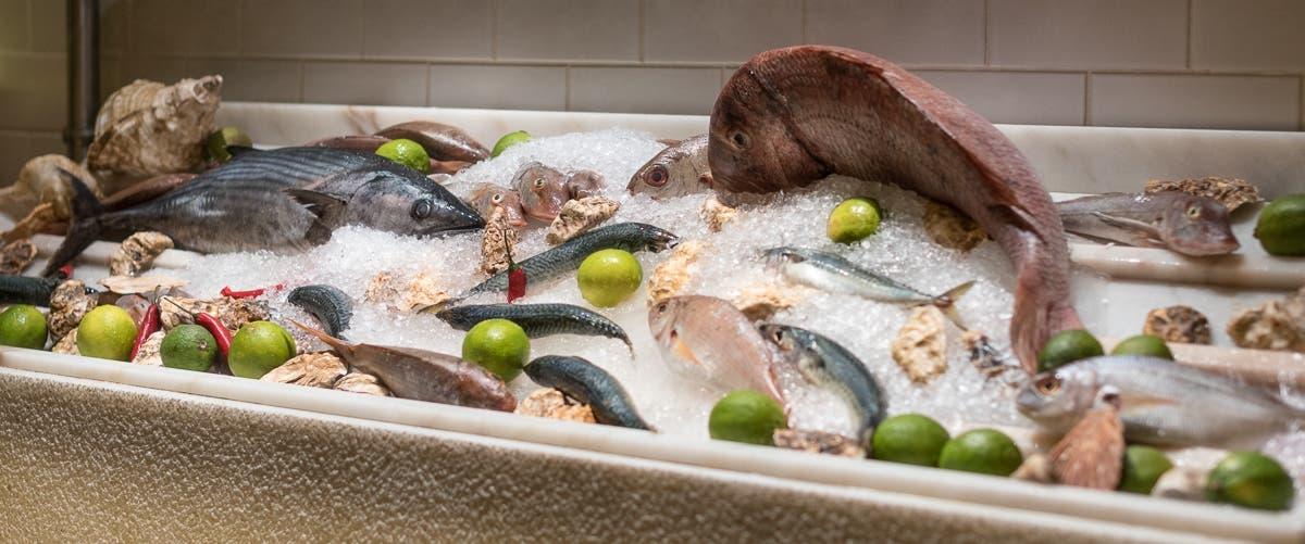 frischer Fisch auf Eisbett