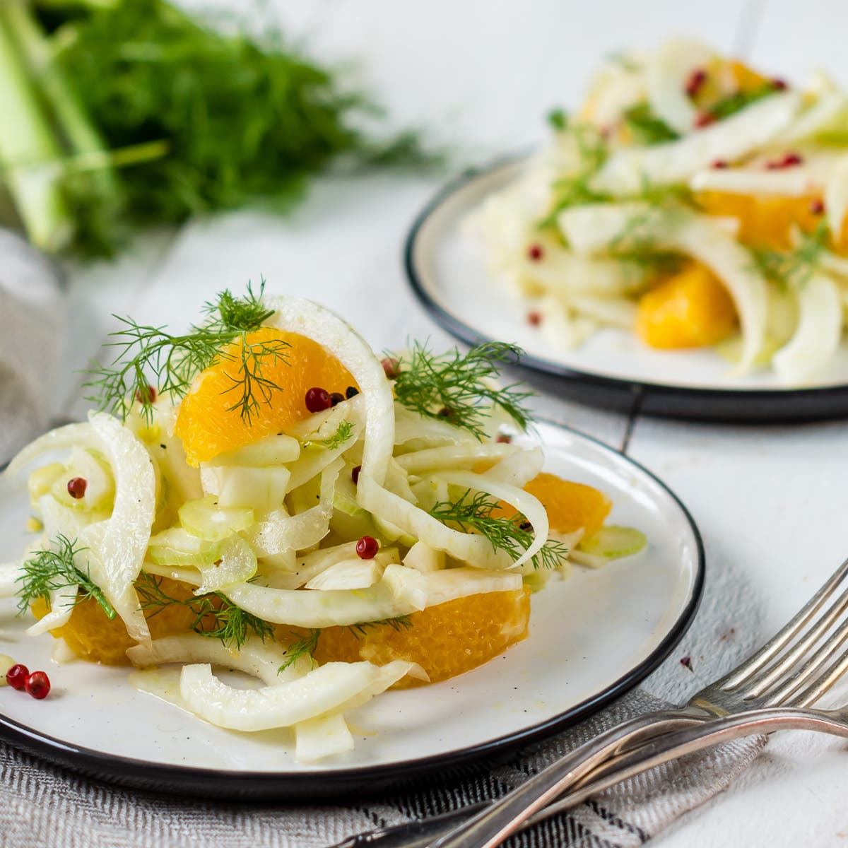 Fenchelsalat mit Orange und rotem Pfeffer auf Teller angerichtet