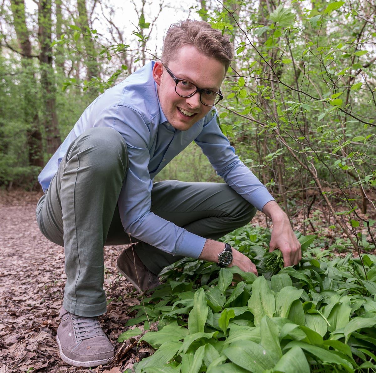 Selbstgemachtes Bärlauchpesto - Bärlauch sammeln im Wald und den Frühling einfangen