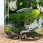 Glas mit eingelegten Gurken, Zwiebeln und Dill