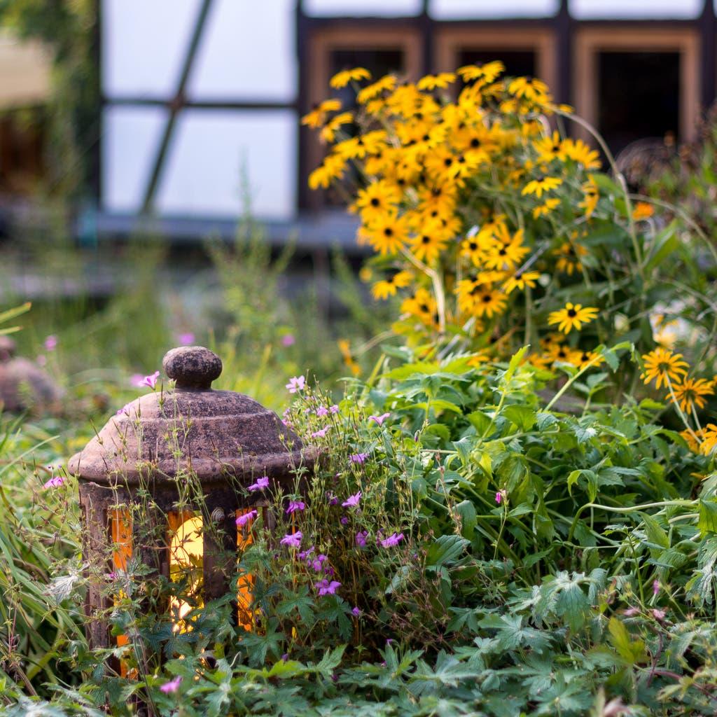 kleine, leuchtende Steinlaterne in Garten der Ayurveda Akademie r