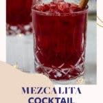 Rote Bete Apperitif im Glas mit Zimstange