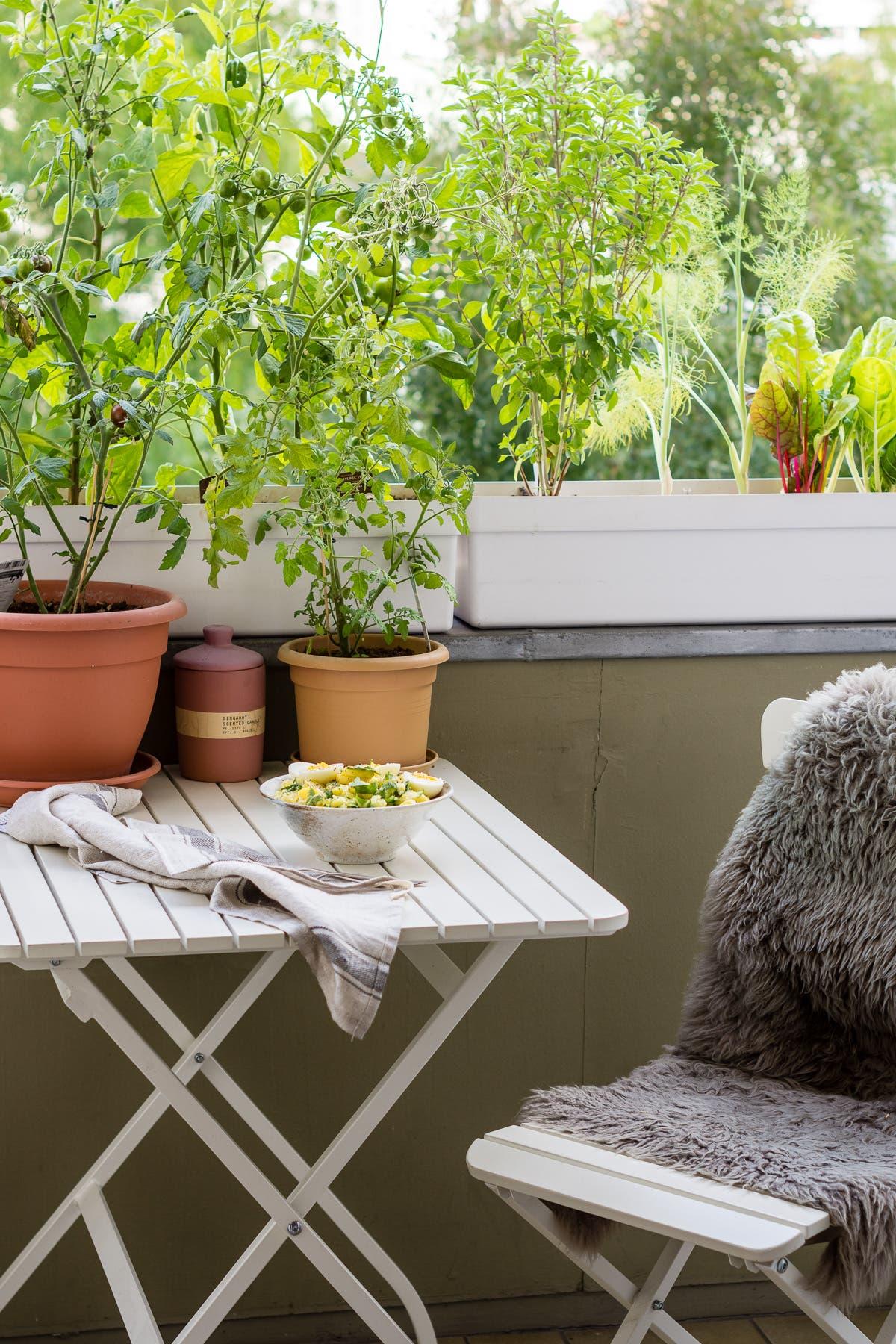 Balkongarten mit grünen Pflanzen, weißen Möbeln und Kartoffelsalat auf dem Tisch