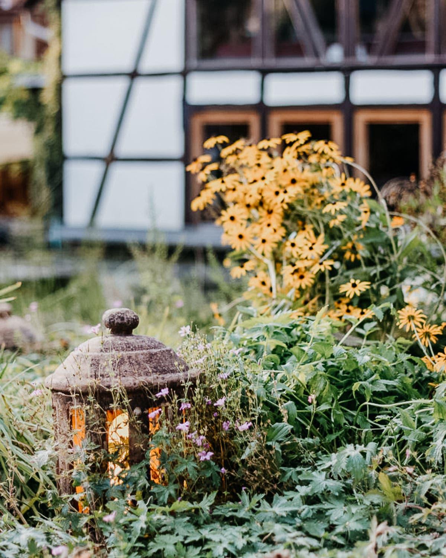 kniehohe Steinlaterne mit gelben Licht von grünen Pflanzen umgeben