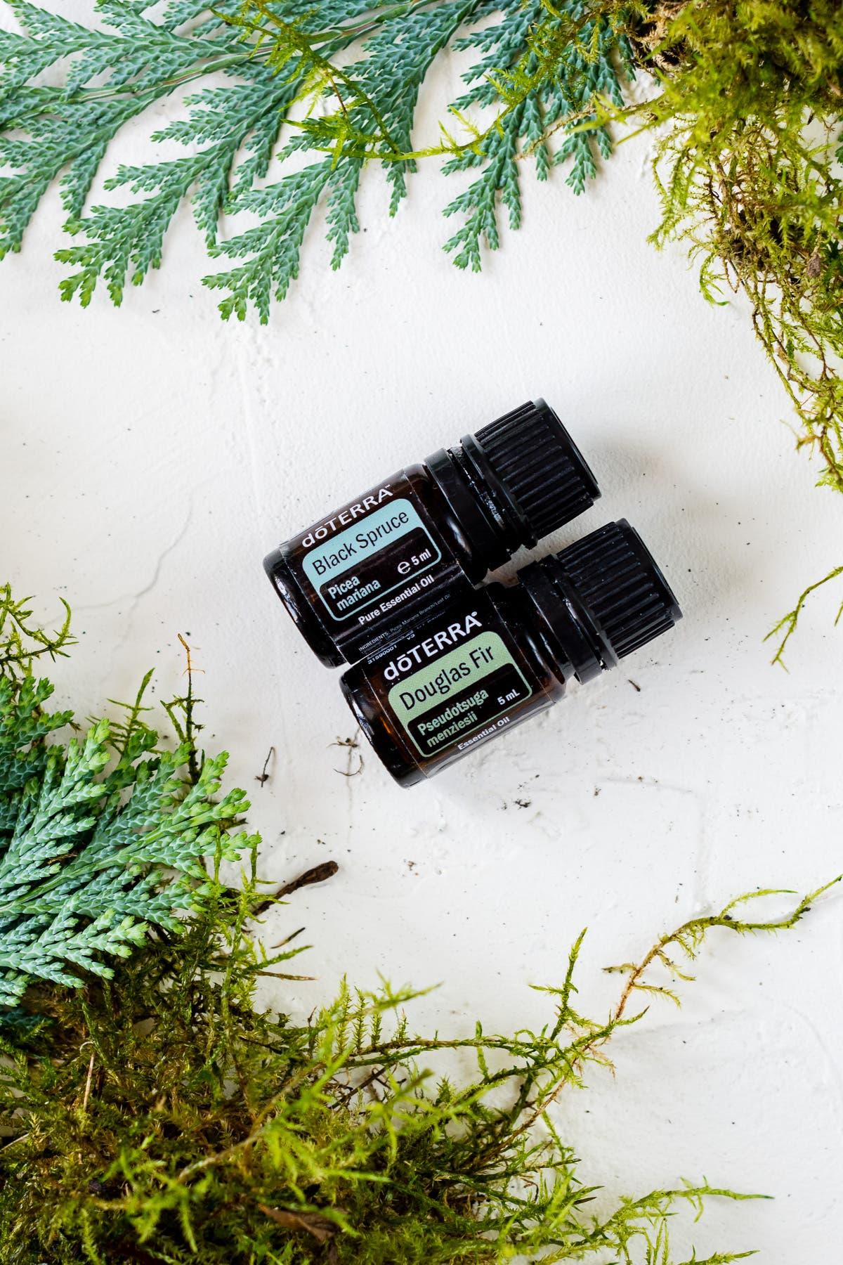 Zwei liegende Fläschchen ätherisches Öl - Black Spruce und Douglas Fir