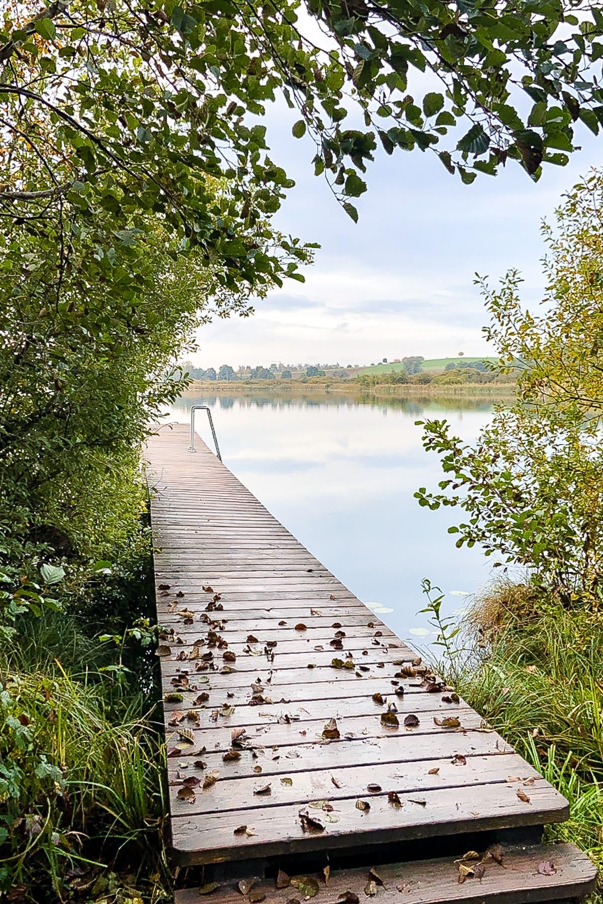 Holzsteg an einem See mit Bäumen.
